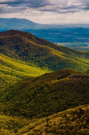 blackrock: Spring colors in the Appalachians, seen from Blackrock Summit in Shenandoah National Park, Virginia.