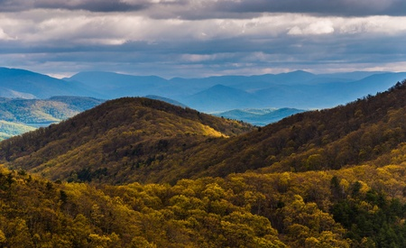 stomy: Spring yellows in the Blue Ridge Mountains, seen from Skyline Drive in Shenandoah National Park, Virginia. Stock Photo