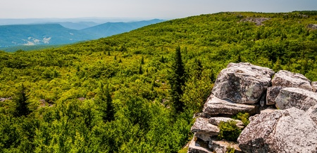 allegheny: View east of the Appalachians from Bear Rocks, in the high Allegheny Mountains of Dollys Sods Wilderness, Monongahela National Forest, West Virginia. Stock Photo