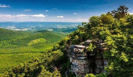 west virginia trees: View of the Shenandoah Valley and cliffs seen from Big Schloss in George Washington National Forest, Virginia. Stock Photo