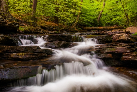 Cascades and bright spring greens on Glen Leigh, in Ricketts Glen State Park, Pennsylvania. Stock Photo - 20759406