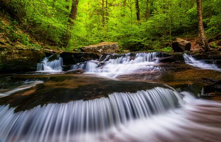 Cascades and bright spring greens on Glen Leigh, in Ricketts Glen State Park, Pennsylvania. Stock Photo - 20759407