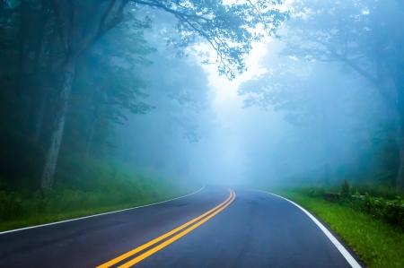 piedmont: Dense fog on Skyline Drive in Shenandoah National Park, Virginia.