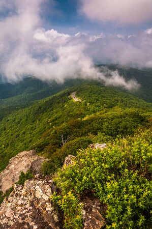 Fog and low clouds over the Blue Ridge Mountains, seen from Little Stony Man Cliffs in Shenandoah National Park, Virginia. photo
