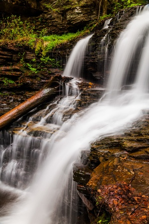 Shawnee Falls, at Ricketts Glen State Park, Pennsylvania. Stock Photo - 20759431