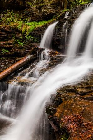 Shawnee Falls, at Ricketts Glen State Park, Pennsylvania. Stock Photo - 20759431