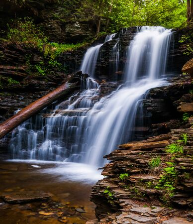 Shawnee Falls, at Ricketts Glen State Park, Pennsylvania. Stock Photo - 20759432