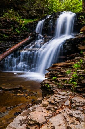 allegheny: Shawnee Falls, at Ricketts Glen State Park, Pennsylvania. Stock Photo