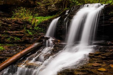 Shawnee Falls, at Ricketts Glen State Park, Pennsylvania. Stock Photo - 20759434