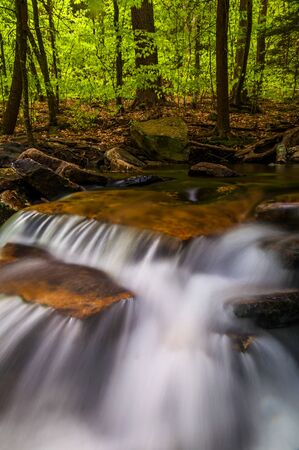 Small cascades along Glen Leigh, Ricketts Glen State Park, Pennsylvania. Stock Photo - 20759437
