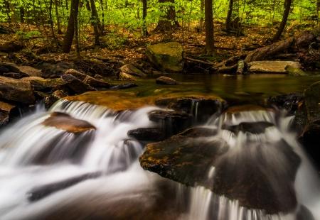 Small cascades along Glen Leigh, Ricketts Glen State Park, Pennsylvania. Stock Photo - 20759438