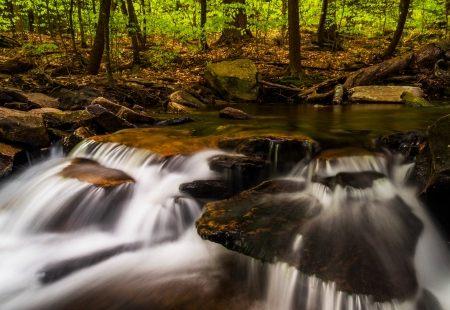 Small cascades along Glen Leigh, Ricketts Glen State Park, Pennsylvania. photo