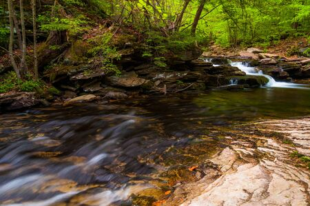 Stream in Ricketts Glen State Park, Pennsylvania. photo