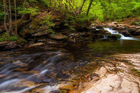 Stream in Ricketts Glen State Park, Pennsylvania. Stock Photo - 20759441