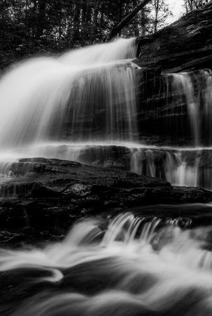 Vertical black and white image of Onondaga Falls, in Glen Leigh at Ricketts Glen State Park, Pennsylvania. photo