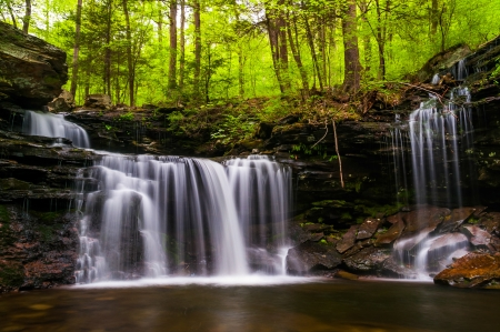 Waterfall on Kitchen Creek in Ricketts Glen State Park, Pennsylvania. Stock Photo - 20759454