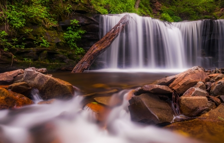 Beautiful waterfall at Ricketts Glen State Park, Pennsylvania. photo