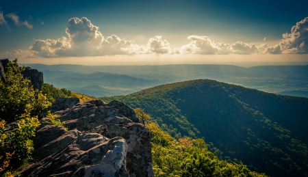 blue ridge mountains: Evening view from cliffs on Hawksbill Summit, in Shenandoah National Park, Virginia.