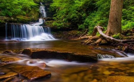 allegheny: Ozone Falls, at Ricketts Glen State Park, Pennsylvania. Stock Photo