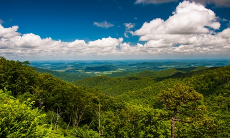 ridge: View of Piedmont from Skyline Drive in Shenandoah National Park, Virginia. Stock Photo