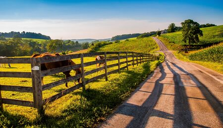 backroad: Fence and horses along a country backroad in rural York County, PA. Stock Photo