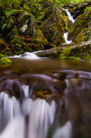Lower Dark Hollow Falls, in its lush, rocky enviroment in Shenandoah National Park, Virginia. photo