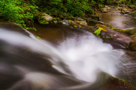 View down a small waterfall on Hogcamp Branch in Shenandoah National Park, Virginia. photo