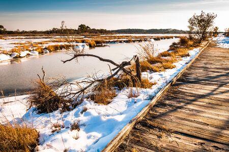 boardwalk trail: Boardwalk trail through a  snow covered marsh in Assateague Island National Seashore, Maryland. Stock Photo