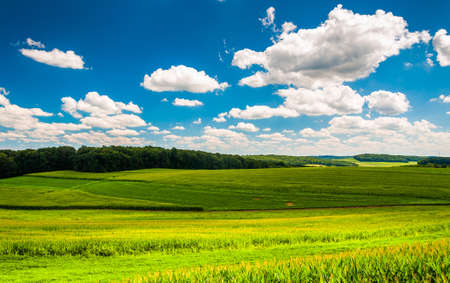 Beautiful summer clouds over fields and rolling hills in Southern York County, Pennsylvania. Stock Photo - 21433436