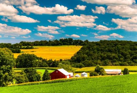 bauernhof: Bauernhof Felder und sanften H�geln in l�ndlichen York County, Pennsylvania. Lizenzfreie Bilder