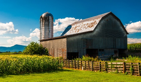 silos: Barn and corn fields on a farm in the Shenandoah Valley, Virginia. Stock Photo