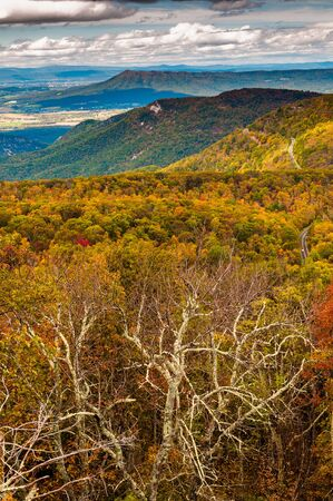 Autumn view of the Shenandoah Valley and Appalachian Mountains from Loft Mountain, Shenandoah National Park, Virginia. photo