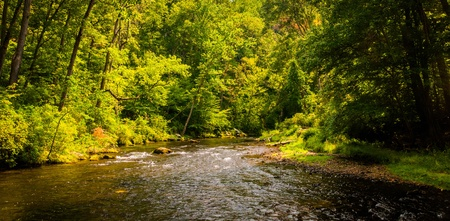 gunpowder: Beautiful stream scene along Gunpowder Falls in Baltimore County, Maryland. Stock Photo