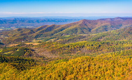 Autumn color in the Appalachian Mountains, seen from Skyline Drive in Shenandoah National Park, Virginia. photo
