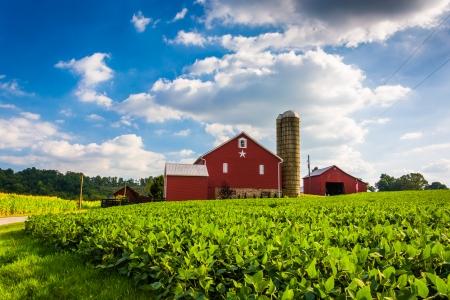 봄 그 로브, 펜실베니아 근처 농장에서 아름다운 농장 필드와 헛간.