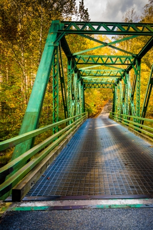 gunpowder: Bridge in Gunpowder Falls State Park, Maryland.