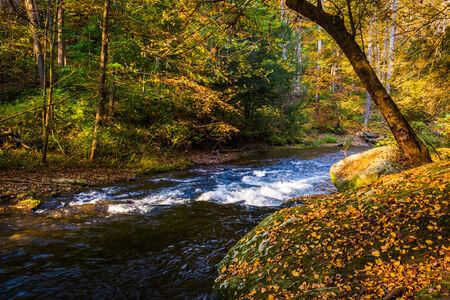 Cascades on the Gunpowder River in Gunpowder Falls State Park, Maryland. photo