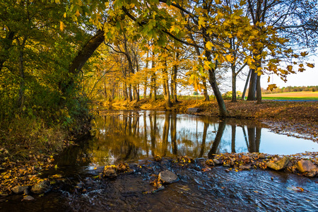 Fall reflections in a stream, in rural Frederick County, Maryland. Stock Photo