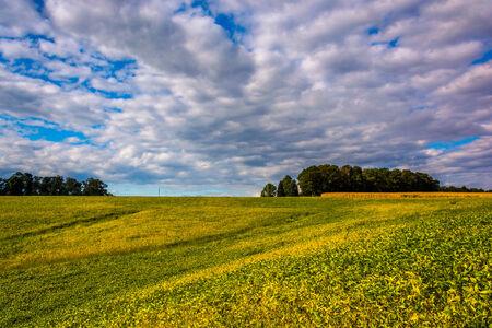 Farm fields and rolling hills near Stewartstown, Pennsylvania.