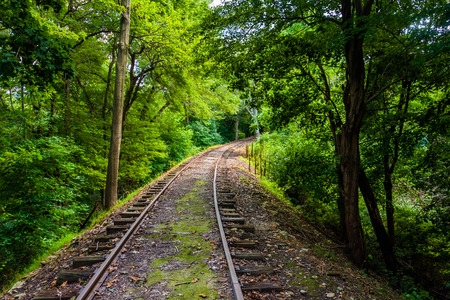 forest railroad: Railroad tracks through a forest in York County, Pennsylvania.