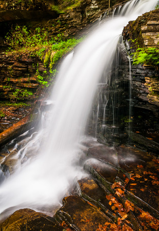 Shawnee Falls, at Ricketts Glen State Park, Pennsylvania. photo