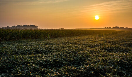 Sunrise over farm fields in rural York County, Pennsylvania. photo