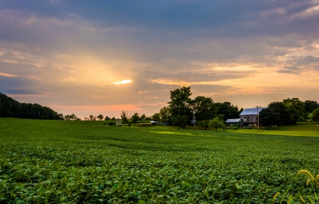 backroad: Sunset sky over farm fields in rural York County, Pennsylvania.