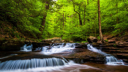 Cascades and bright spring greens on Glen Leigh, in Ricketts Glen State Park, Pennsylvania. photo