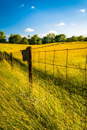 Fence in a grassy field, at Antietam National Battlefield, Maryland. photo