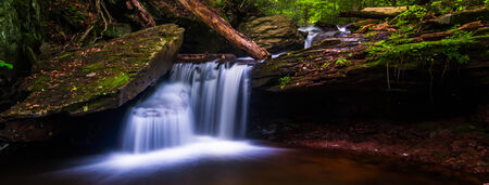 Small cascade at Ricketts Glen State Park, Pennsylvania. photo