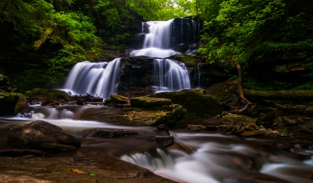 Tuscarora Falls, at Ricketts Glen State Park, Pennsylvania. photo