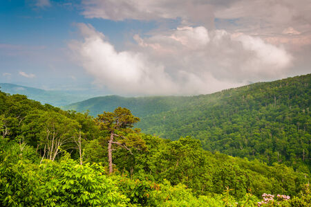 View of the Appalachian Mountains on a foggy day in Shenandoah National Park, Virginia. photo