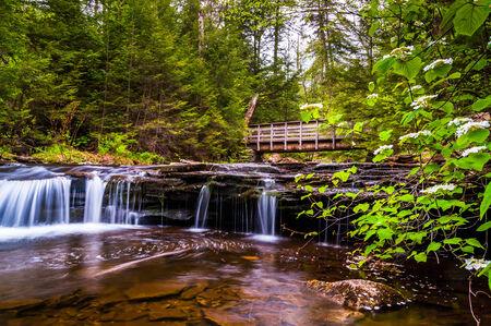 Walking bridge and cascades on Kitchen Creek in Ricketts Glen State Park, Pennsylvania. photo