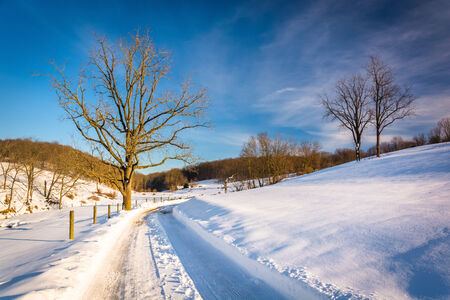 winter road: Trees along a snow-covered road in Seven Valleys, Pennsylvania.
